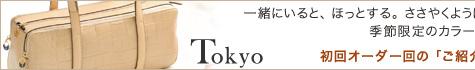ロベルタディカメリーノ Roberta di Camerino バッグ TOKYO(トウキョウ)